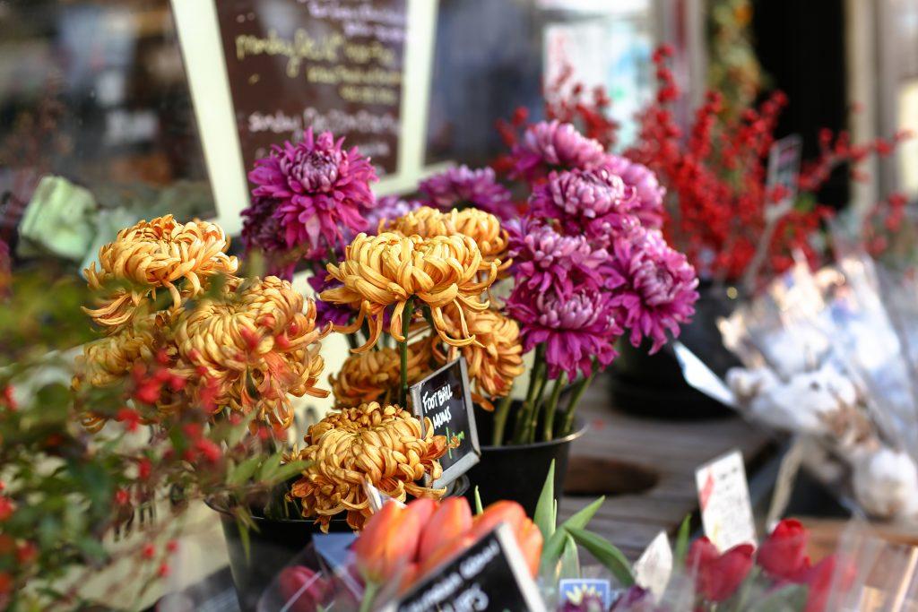 なぜお供えの花に菊を飾るのか
